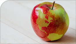 globe superimposed on an apple | photo illustration | 2017-11-28