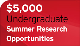 $5,000 Undergrad Summer Research Opportunities, Dean's Award for Research Excellence | Graphic | 2018-01-15