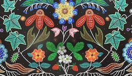 Indigenous Framework YFile story (featured image)
